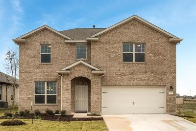 Georgetown Single Family Home For Sale: 132 Peruvian Ln