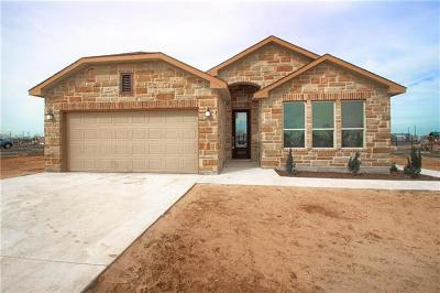 Del Valle Single Family Home For Sale: 117 Acapulco Dr