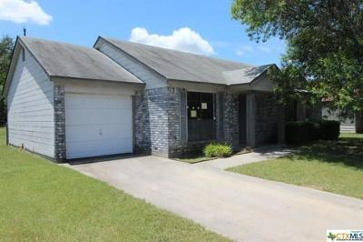 Coryell County Single Family Home For Sale: 311 Halter Dr