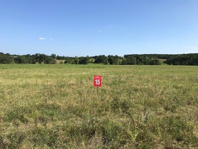 Bell County, Burnet County, Coryell County, Lampasas County, Mills County, Williamson County, San Saba County, Llano County Residential Lots & Land For Sale: 15 Delorean Cir