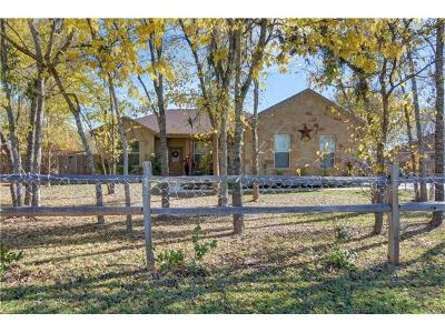 Bastrop County Single Family Home For Sale: 1353 Lovers Ln