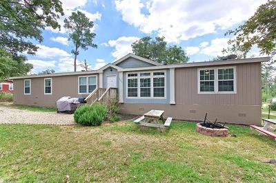 Bastrop County Single Family Home For Sale: 125 Peace Haven Ln