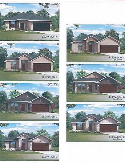 Buda Single Family Home For Sale: 237 Banana St