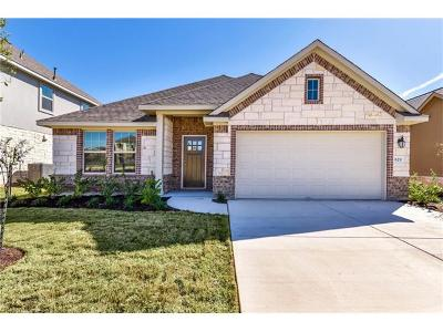 Round Rock Single Family Home For Sale: 829 Centerra Hills Cir