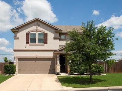 Pflugerville Single Family Home For Sale: 17024 Bridgefarmer Blvd
