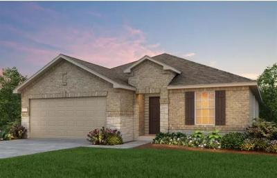 Pflugerville Single Family Home For Sale: 20024 Ploughshores Ln