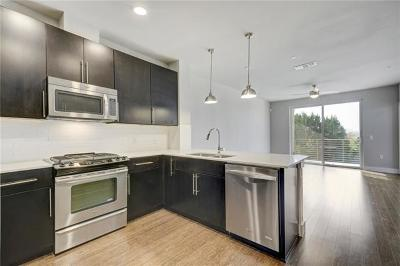 Austin Condo/Townhouse For Sale: 2805 Dulce Ln #1024