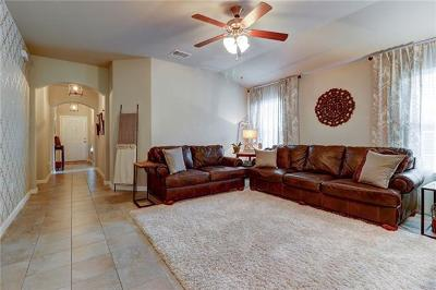 Kyle Single Family Home For Sale: 361 Purple Martin Ave