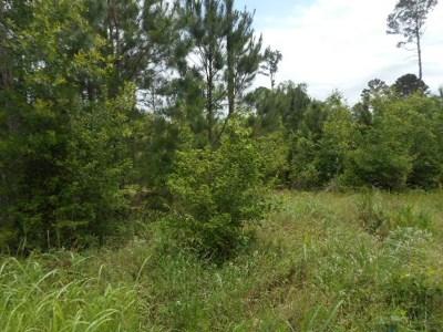 Smithville Residential Lots & Land For Sale: T.B.D. Alum Creek Rd