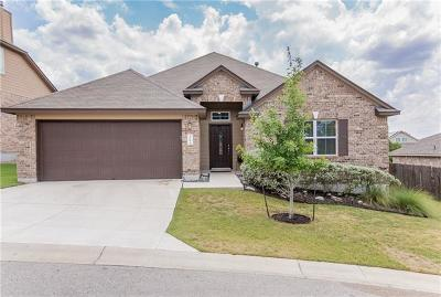 Austin Single Family Home For Sale: 509 Stone View Trl