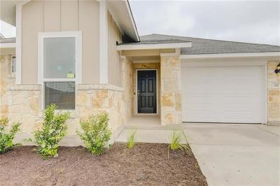 Elgin Single Family Home For Sale: 110 Lake Placid Run