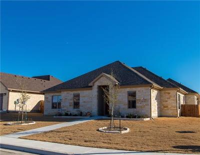 Williamson County Single Family Home Active Contingent: 600 Jake Dr