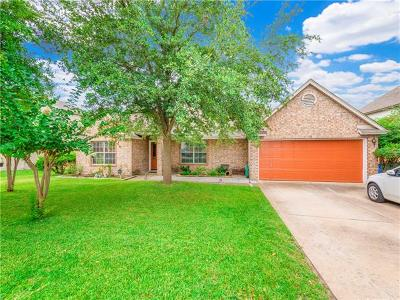 Pflugerville Single Family Home For Sale: 1105 Purple Martin Dr
