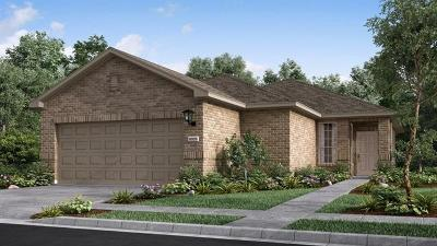 Round Rock Single Family Home For Sale: 5099 Cassia Way