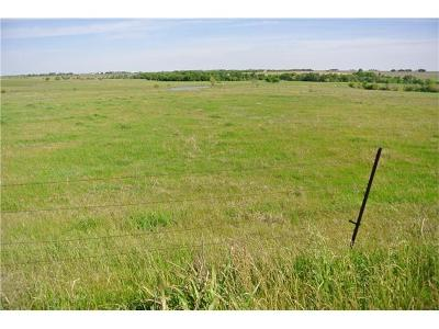 Taylor Farm For Sale: 151 County Road 398