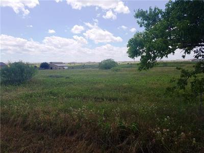 Pflugerville Residential Lots & Land For Sale: 20102 Hodde Ln