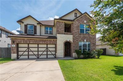 Buda, Kyle Single Family Home For Sale: 523 Apricot Dr