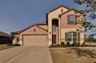 Kyle Single Family Home Active Contingent: 396 Evening Star