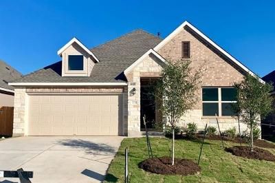 Pflugerville Single Family Home For Sale: 17229 Lathrop Ave