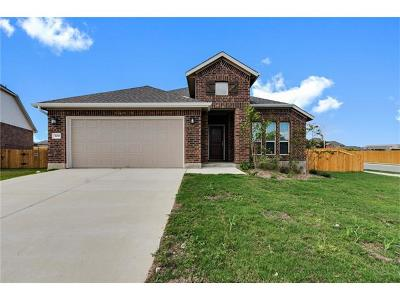 Georgetown Single Family Home For Sale: 300 Beretta Dr