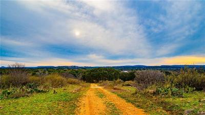 Burnet County, Lampasas County, Bell County, Williamson County, llano, Blanco County, Mills County, Hamilton County, San Saba County, Coryell County Farm For Sale: Cr 308