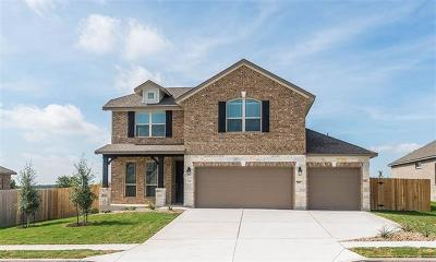 Pflugerville Single Family Home For Sale: 709 Tinton Falls Ln
