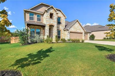 Dripping Springs Single Family Home For Sale: 220 Brins Way
