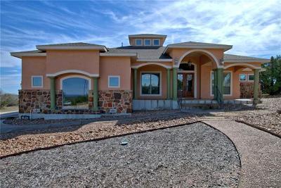 Canyon Lake Single Family Home For Sale: 522 Rebecca Creek Rd