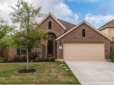 Pflugerville Single Family Home For Sale: 3417 Grail Hollows Rd