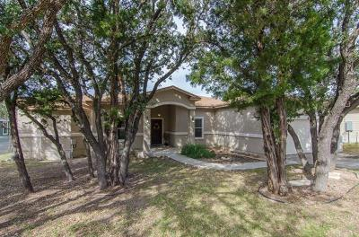Lago Vista, Jonestown Single Family Home For Sale: 2502 Newton Dr