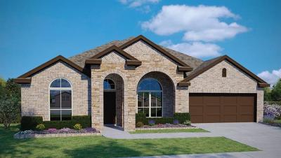 Pflugerville Single Family Home For Sale: 18312 Cercina Trl