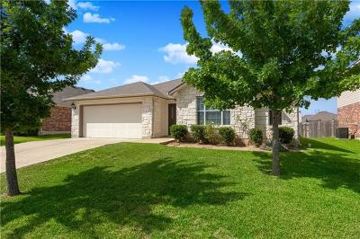 Travis County Single Family Home For Sale: 18608 Dry Brook Loop