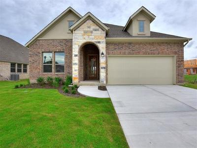 Pflugerville Single Family Home For Sale: 20220 Great Egret Ln