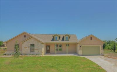 Bastrop County Single Family Home For Sale: 222 Mazatlan Dr
