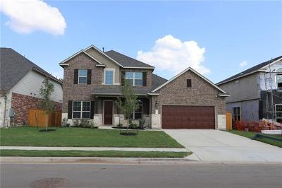 Georgetown Single Family Home For Sale: 217 Cross Timbers Dr