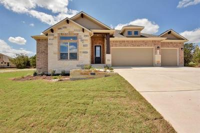 Dripping Springs Single Family Home For Sale: 1191 Bearkat Canyon Dr