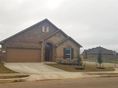 San Marcos Single Family Home For Sale: 117 Durata Dr