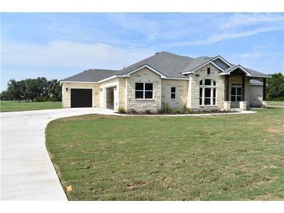 Liberty Hill Single Family Home For Sale: 217 Oak Hill Dr