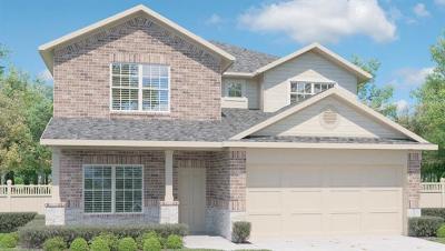 Kyle Single Family Home For Sale: 155 Cibolo Creek Dr