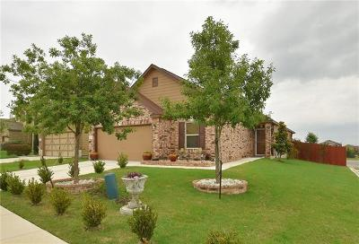 Hays County, Travis County, Williamson County Single Family Home For Sale: 6920 Sunderland Trl
