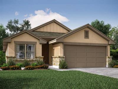 Round Rock Single Family Home For Sale: 7305 Loggia Pl