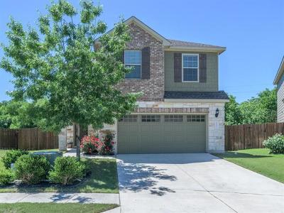 Austin Single Family Home For Sale: 10152 Wading Pool Path