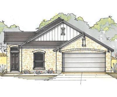 Buda Single Family Home For Sale: 382 Limerick Rd