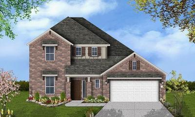 Round Rock Single Family Home For Sale: 3223 Hidalgo Loop