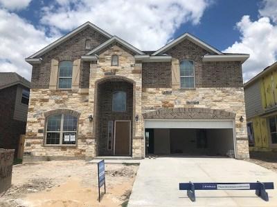Hays County, Travis County, Williamson County Single Family Home For Sale: 504 Puerta Vallarta Ln