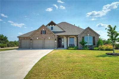 Dripping Springs Single Family Home For Sale: 1137 Buffalo Canyon Dr