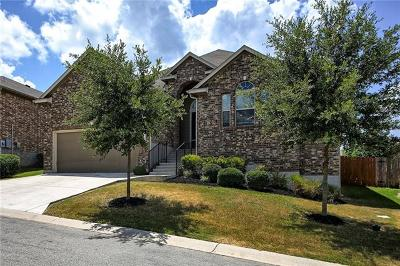 Austin Single Family Home Active Contingent: 132 Stone View Trl