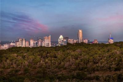 Austin TX Single Family Home For Sale: $4,550,000