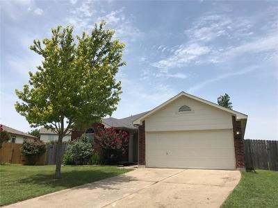 Hutto Single Family Home Pending - Taking Backups: 317 Abamillo Ct