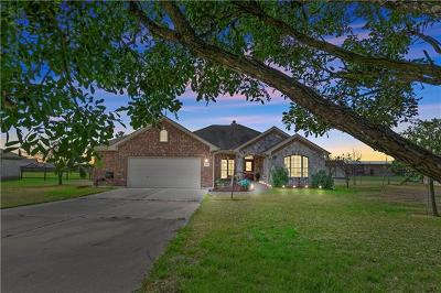 Hutto Single Family Home For Sale: 556 Will Smith Cir